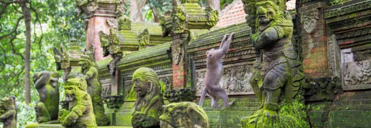 Monkey Forest Sacred Temple Ubud